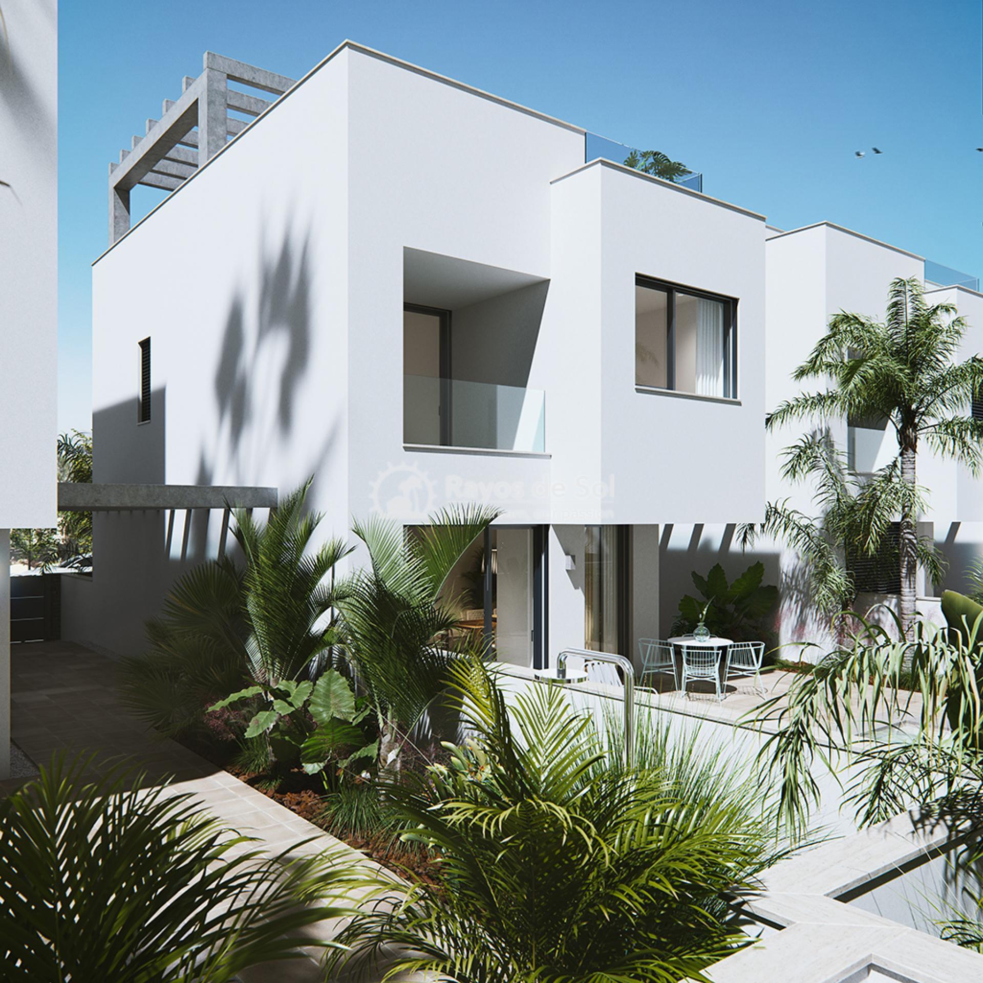 Luxury beachfront villas  in Torre de la Horadada, Pilar de la Horadada, Costa Blanca (Las-Higuericas-v12) - 8