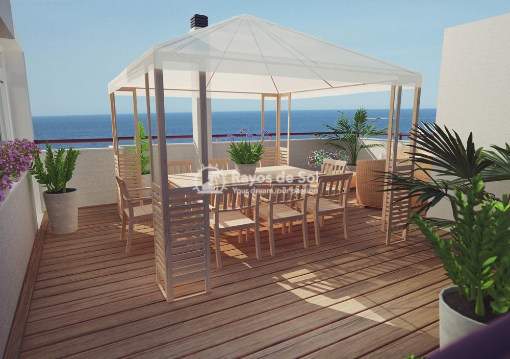 Apartment  in Calpe, Costa Blanca North (2990) - 1