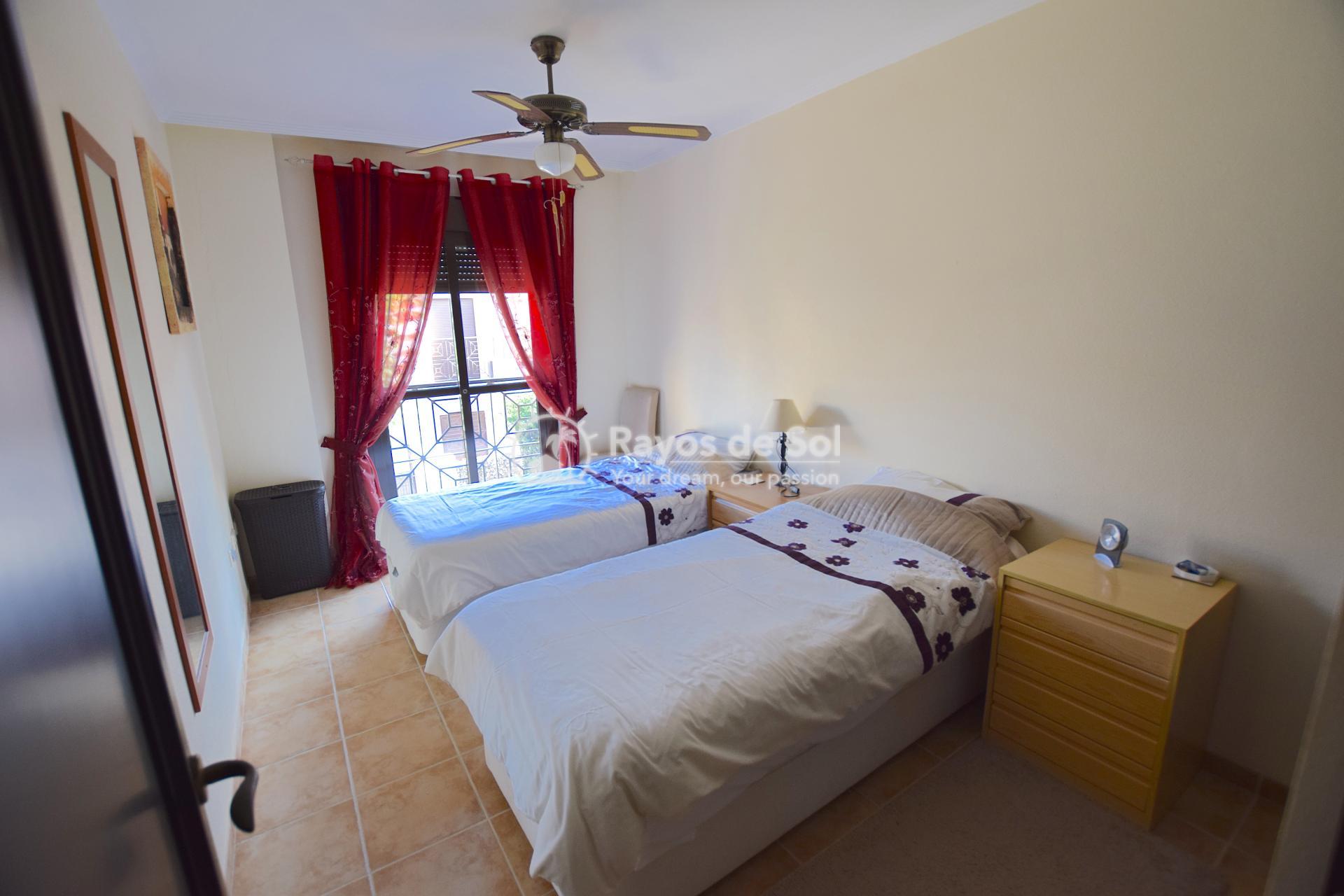 Quadvilla  in San Cayetano, Costa Cálida (SCRE0037) - 24