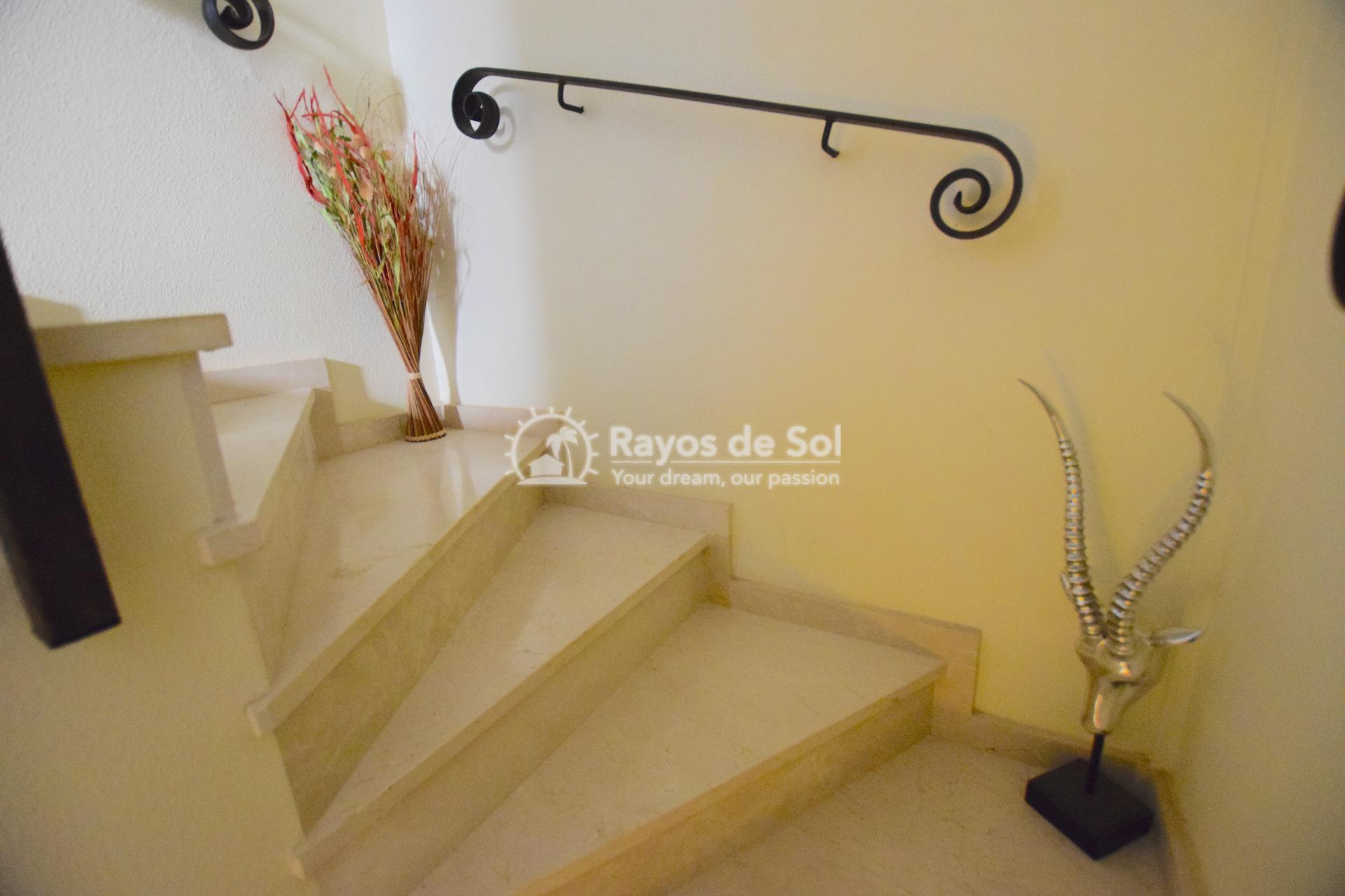 Quadvilla  in San Cayetano, Costa Cálida (SCRE0037) - 22