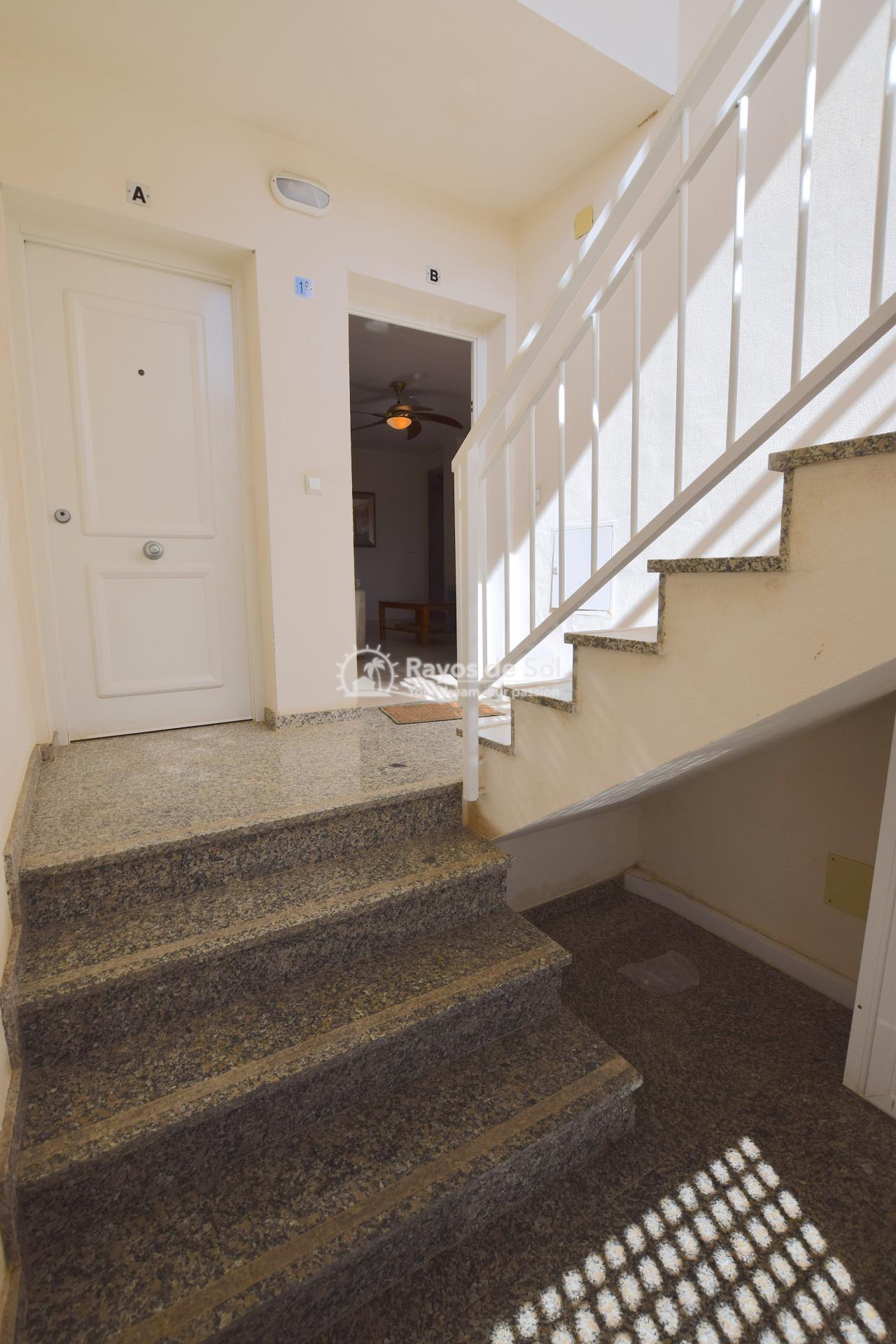 Ground floor apartment  in San Cayetano, Costa Cálida (SCRE0040) - 4