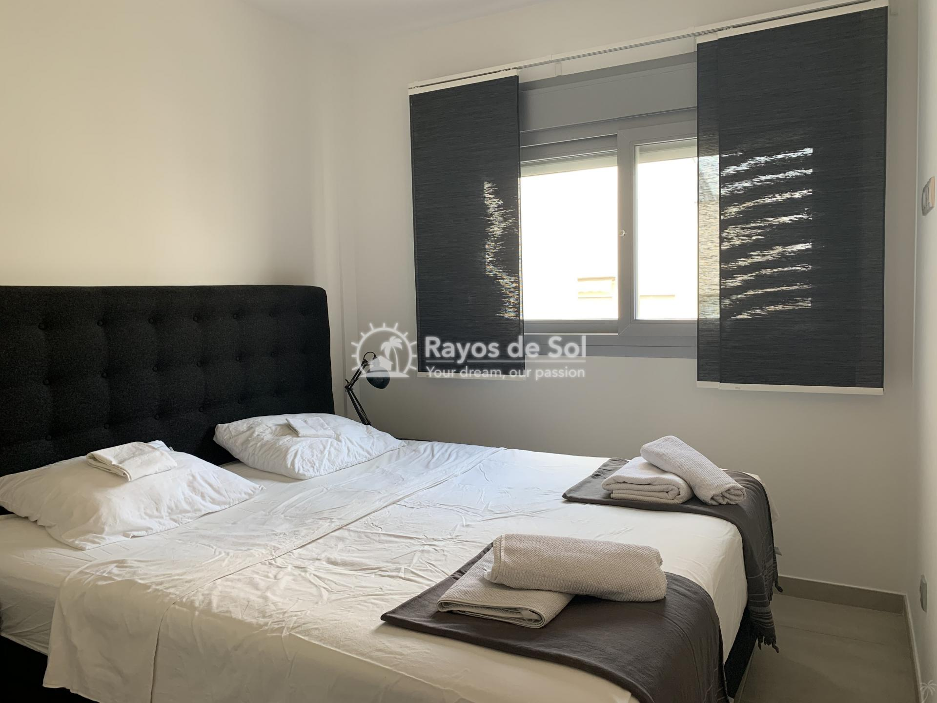 Apartment  in Torrevieja, Costa Blanca (cld-2085) - 4
