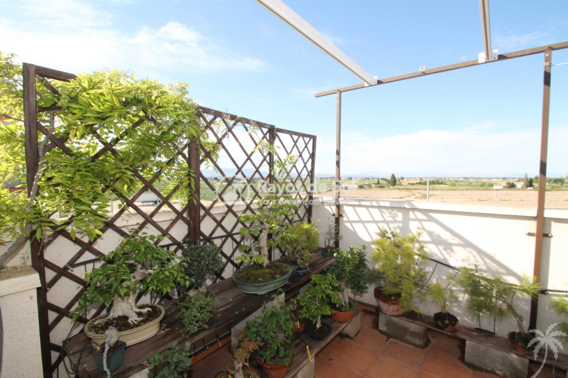 House  in Rojales, Costa Blanca (cld-1810) - 7