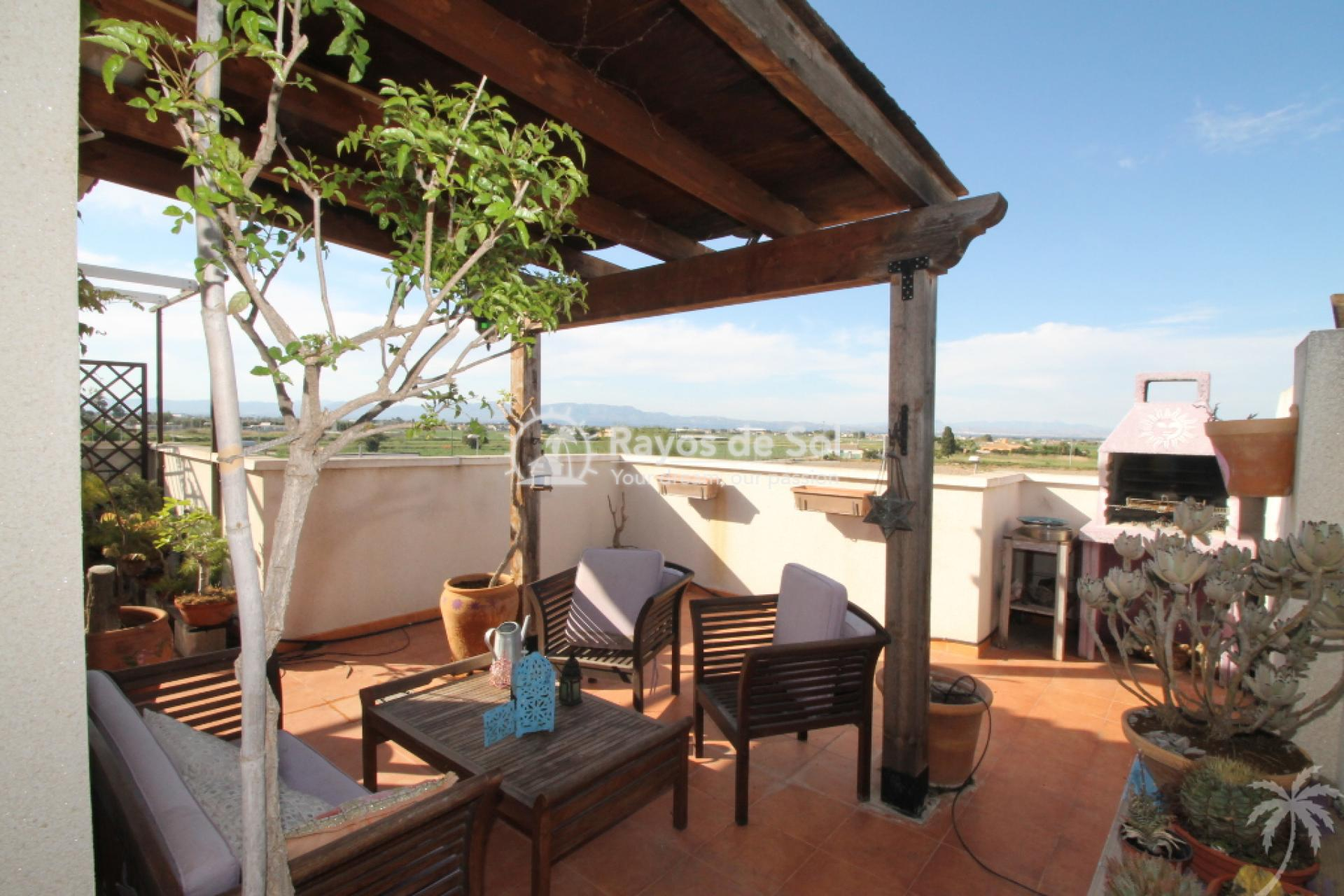 House  in Rojales, Costa Blanca (cld-1810) - 8