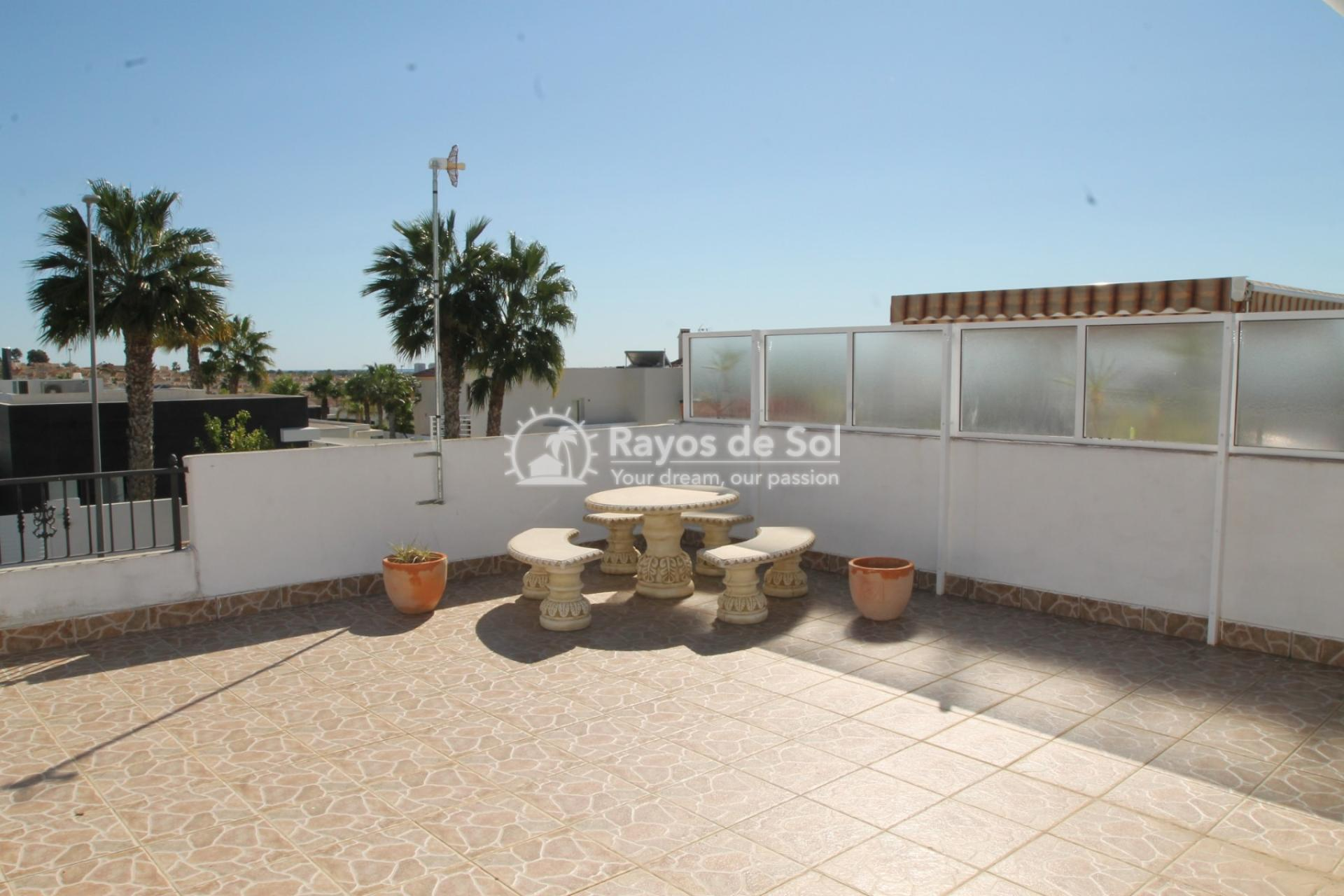 House  in La Marina, Costa Blanca (cld-2353) - 9