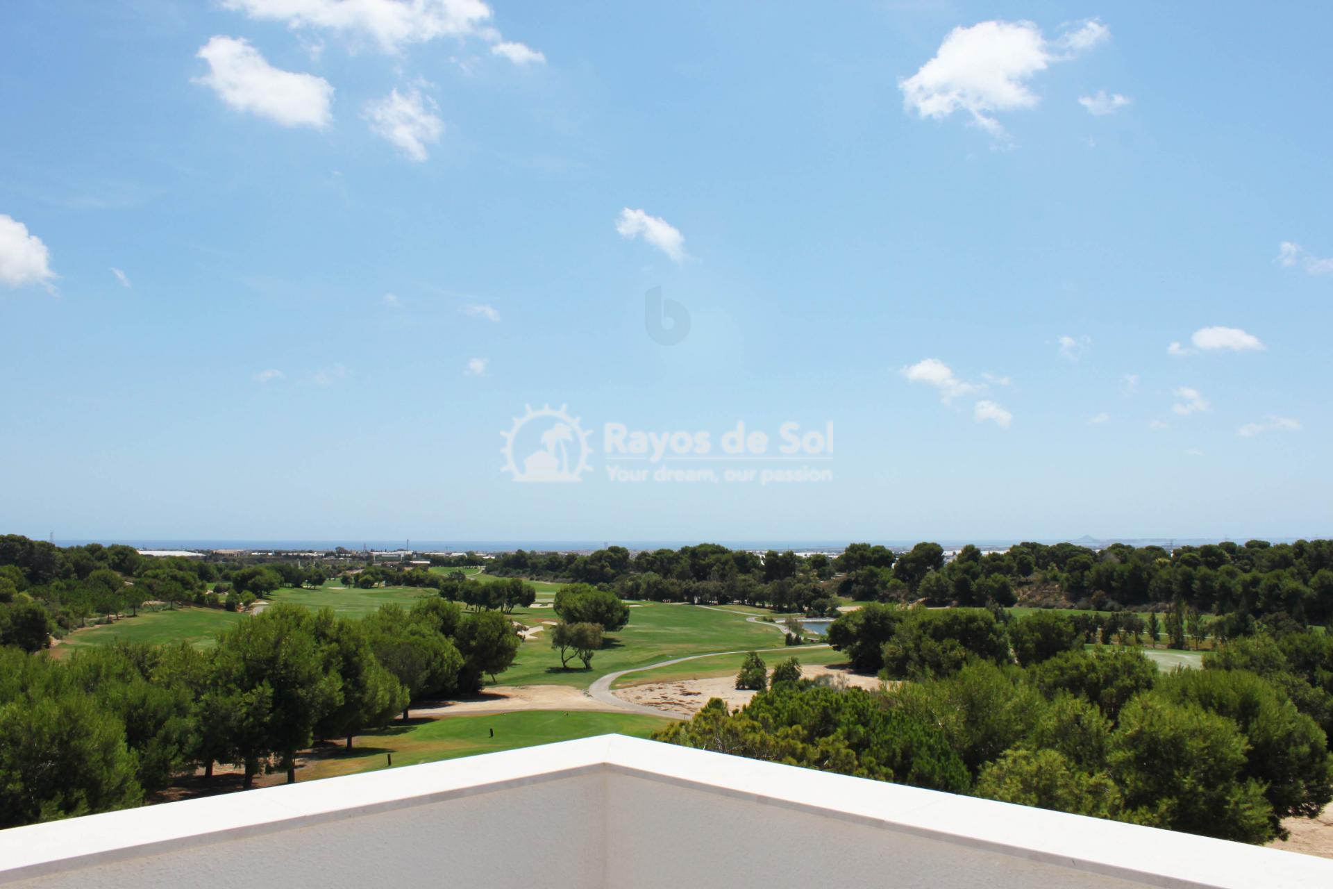 Penthouse  in Pilar de la Horadada, Costa Blanca (azurerg-tf-3d) - 14