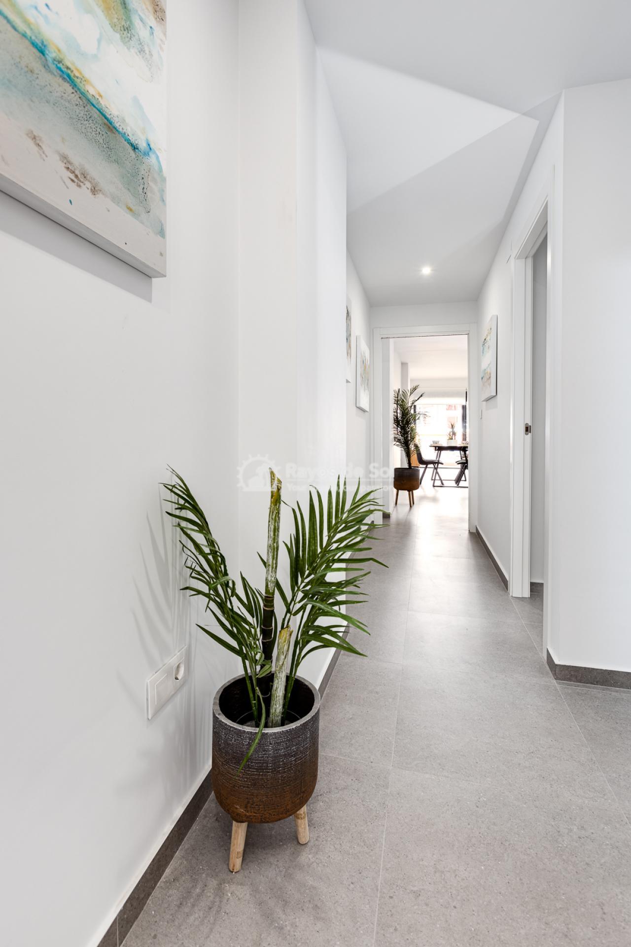Apartment  in Bigastro, Orihuela Costa, Costa Blanca (Maria2P) - 33