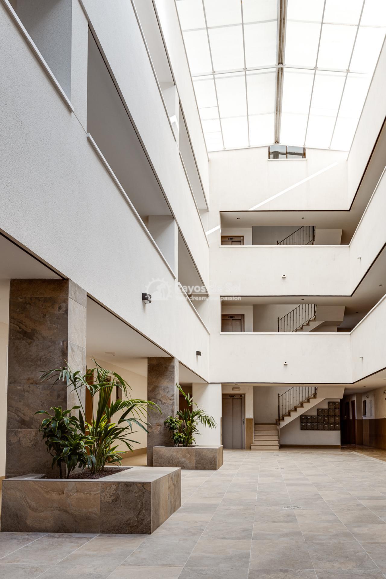 Apartment  in Bigastro, Orihuela Costa, Costa Blanca (Maria2P) - 40