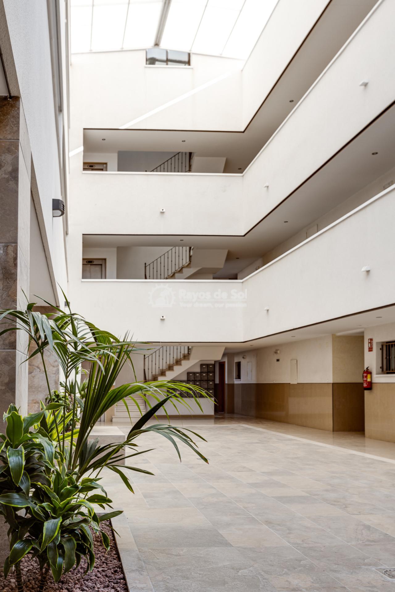 Apartment  in Bigastro, Orihuela Costa, Costa Blanca (Maria2P) - 42