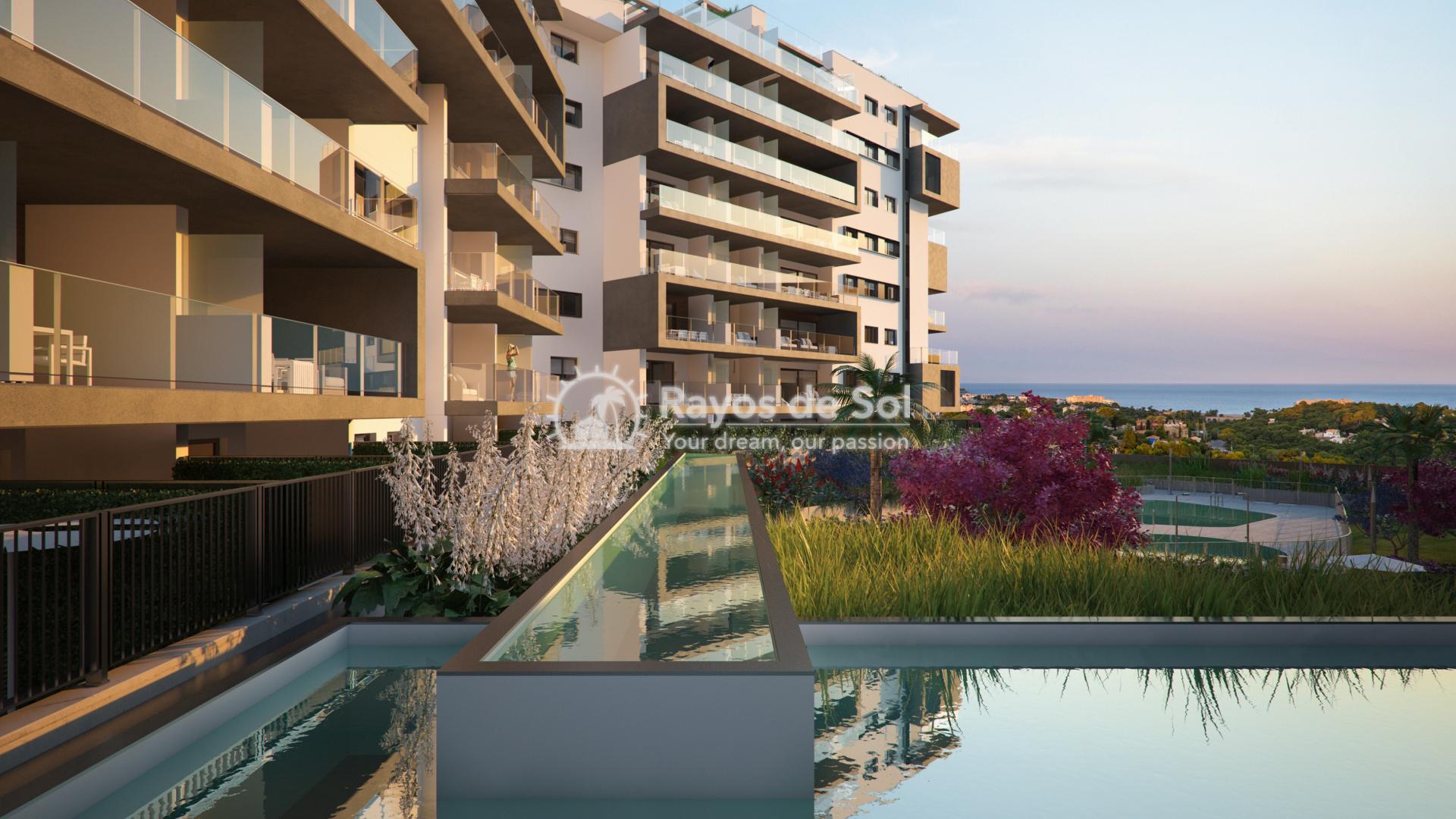 Beautiful apartments with seaviews  in Campoamor, Orihuela Costa, Costa Blanca (CAMURSEA2-2) - 1