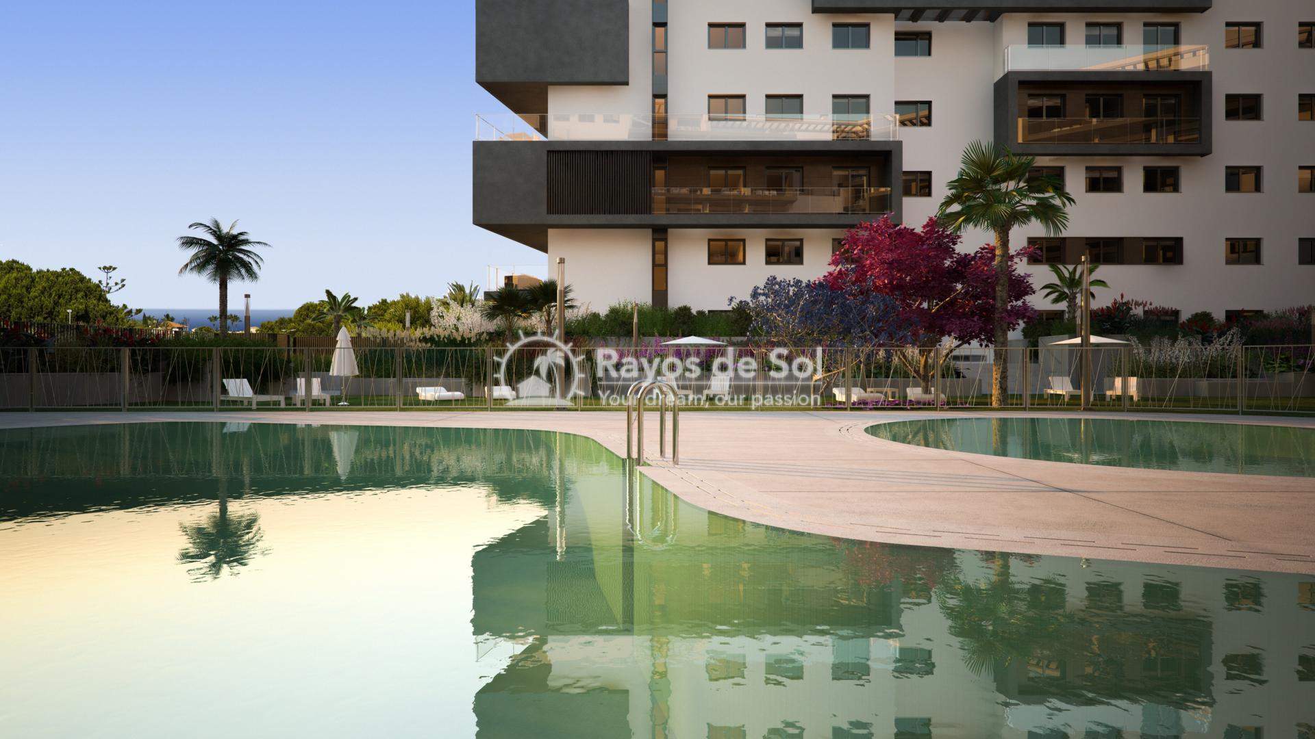 Penthouse with seaviews  in Campoamor, Orihuela Costa, Costa Blanca (CAMURSEA2-2P) - 10