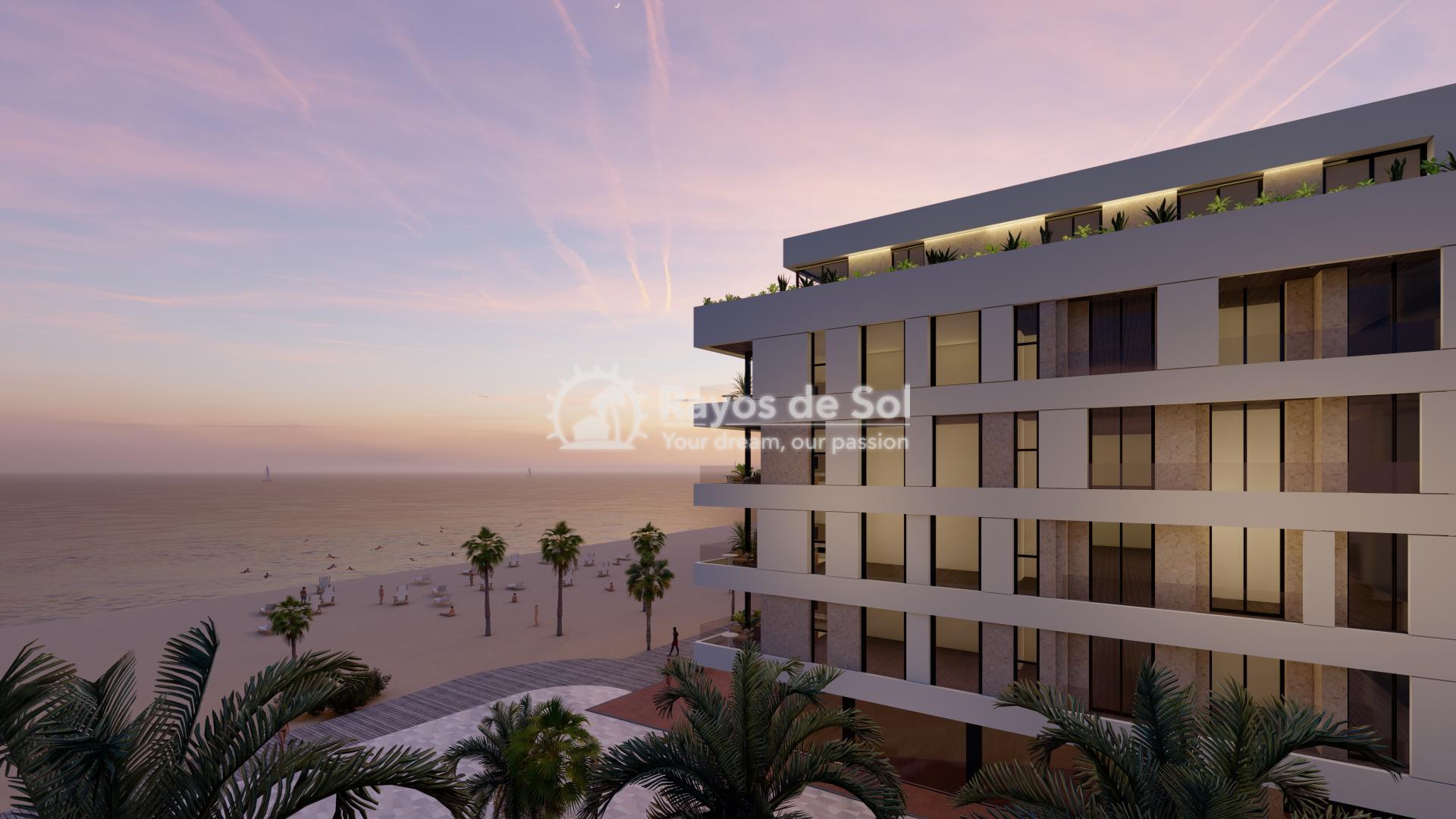 First line apartments  in La Mata, Costa Blanca (LMIMEM3-3) - 18