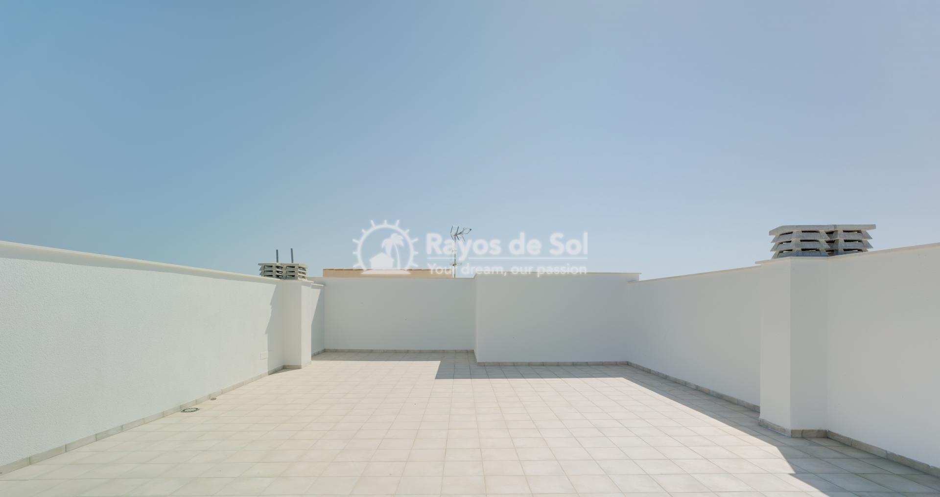 Penthouse  in Pilar de la Horadada, Costa Blanca (Playamar8-tf) - 19