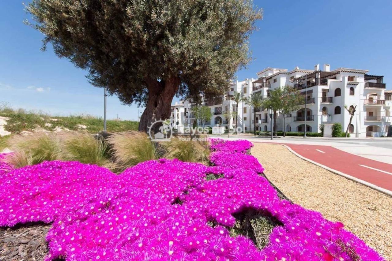 Apartment  in El Valle Golf Resort, Costa Cálida (561225svm) - 18