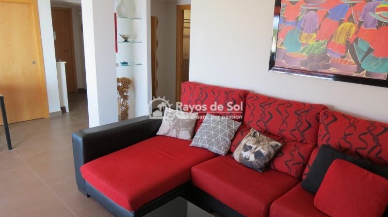 Apartment  in Calpe, Costa Blanca North (cbd1326) - 10