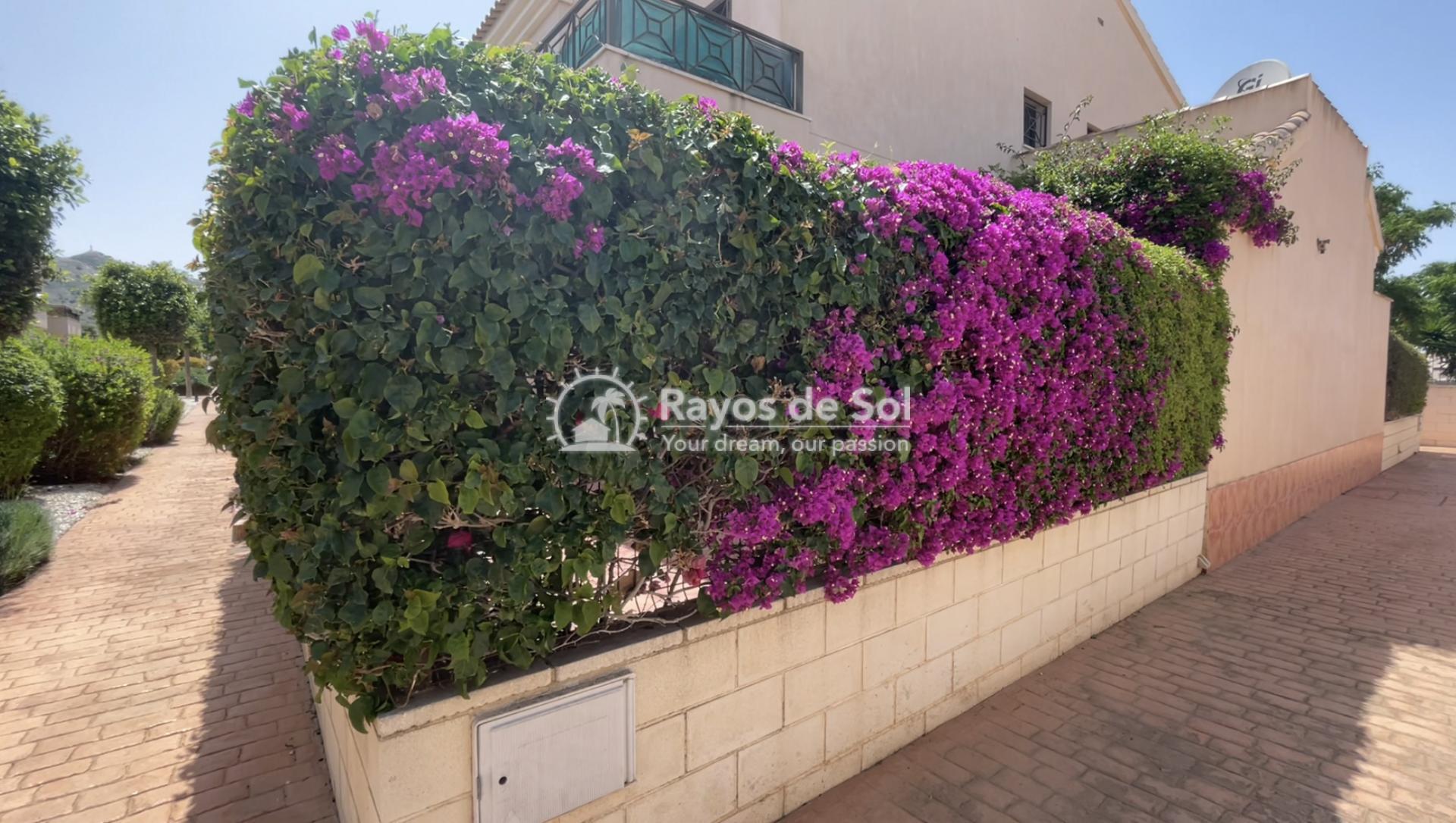 Quadvilla  in San Cayetano, Costa Cálida (SCRE0045) - 23