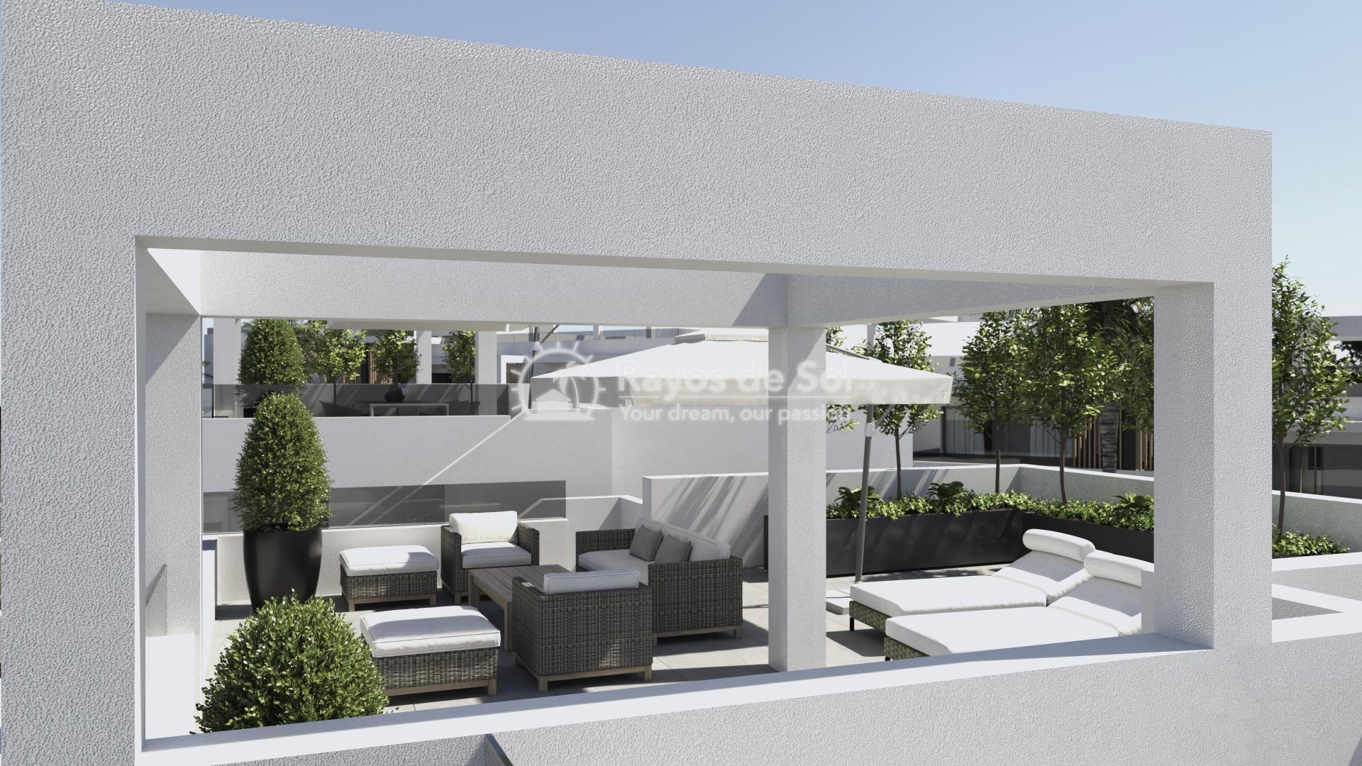 Apartment  in Villamartin, Orihuela Costa, Costa Blanca (VIDUEA73-2P) - 14