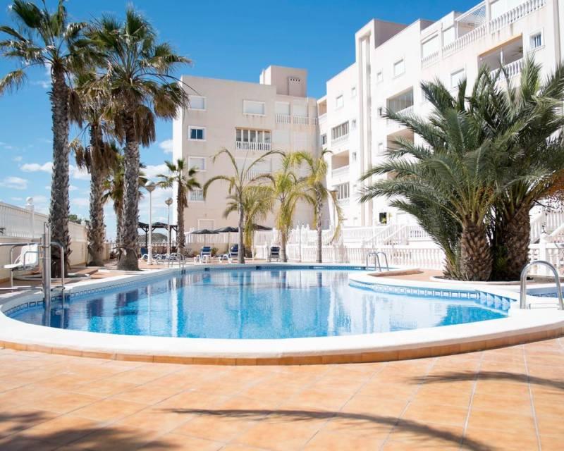 Apartment  in Guardamar del Segura, Costa Blanca (slp2027) - 1