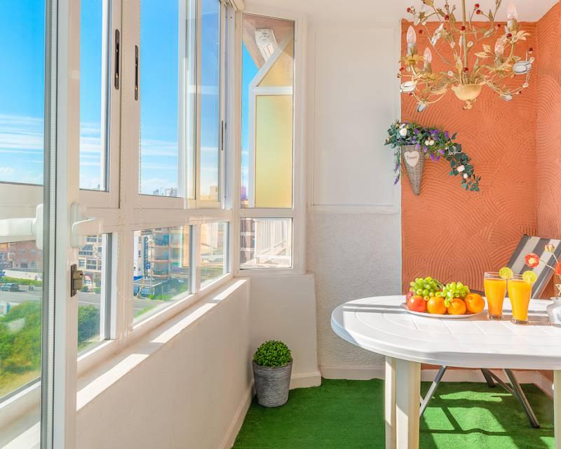 Apartment  in Torrevieja, Costa Blanca (slp2029) - 3