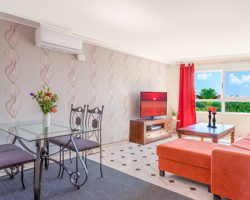 Apartment  in Torrevieja, Costa Blanca (slp2029) - 6