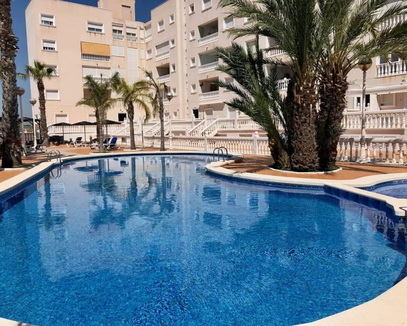 Apartment  in Guardamar del Segura, Costa Blanca (slp2134) - 1