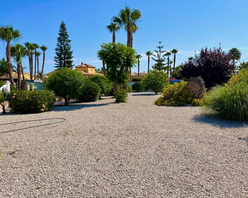 Villa  in Catral, Costa Blanca (slp2159) - 18