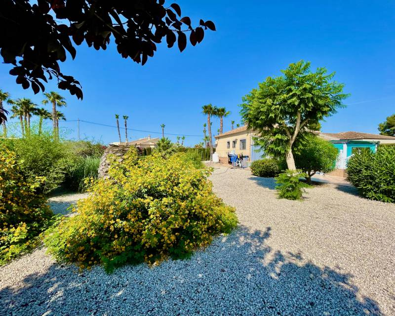 Villa  in Catral, Costa Blanca (slp2159) - 27